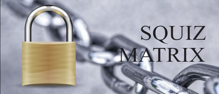 squiz matrix security